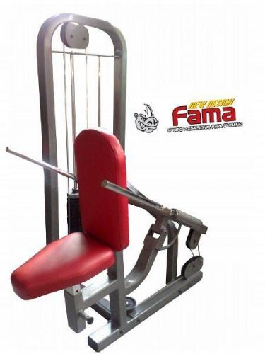 Maquina triceps (2)